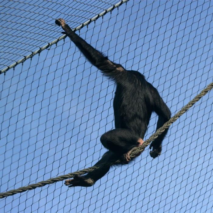 Stainless steel animal enclosure mesh