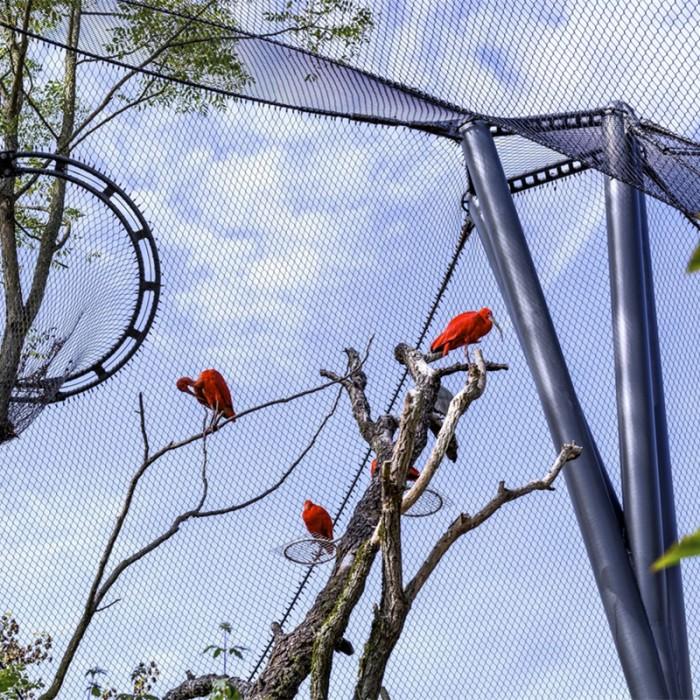 Stainless steel rope mesh for bird netting